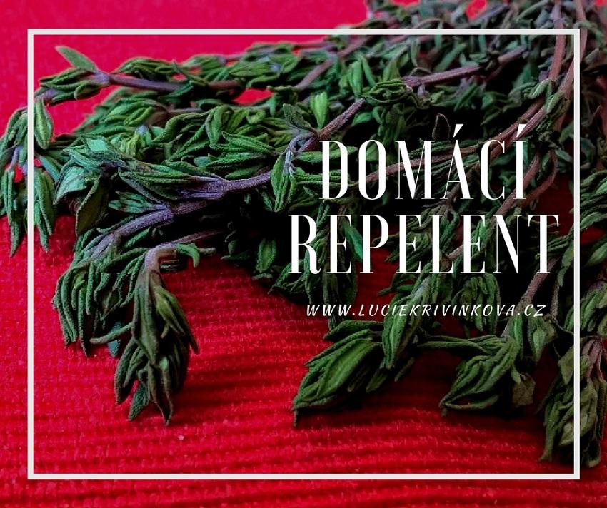 Jak a proč si vyrobit domácí repelent