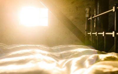 Detox domácnosti:čistota bez použití toxických čističůplus návod na jednoduchý ekologický čisticí prostředek za pár kaček